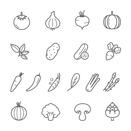 courgette: Lines icon set - vegetable illustration