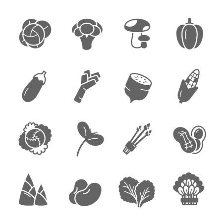 Icon set - vegetable Vector Illustration