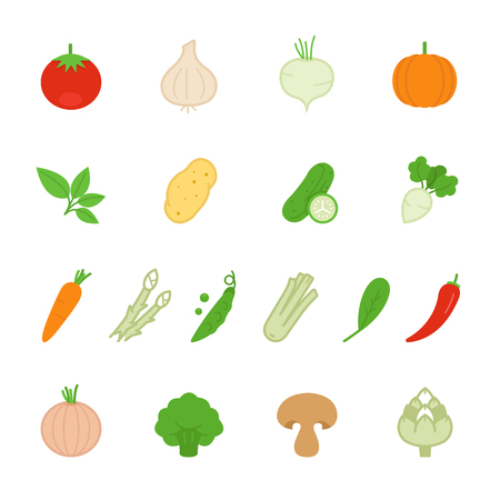 bean sprouts: Color icon set - vegetable