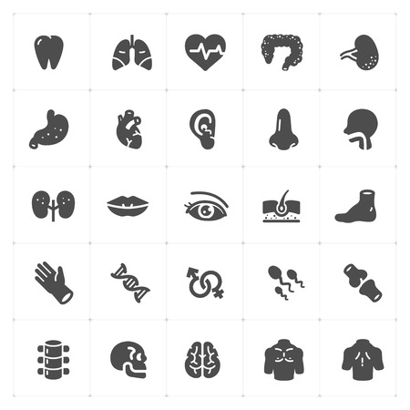 Icon set - Human Anatomy filled icon style vector illustration on white background