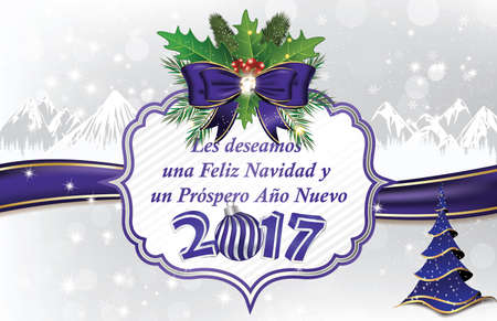 Elegant winter holiday greeting card in Spanish Language: We wish you Merry Christmas and a Happy New Year (Les deseamos una Feliz Navidad & un Prospero Ano Nuevo)  Custom size for a print card Stock Photo