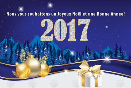 un used: Greeting card 2017 for winter holiday in French language. We wish you Merry Christmas and a Happy New Year (French text: Nous vous souhaitons un Joyeux Noel et une Bonne Annee). Print colors used