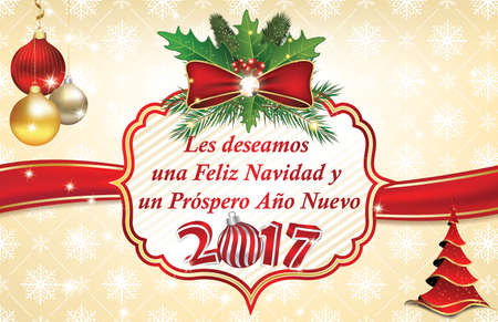 spanish language: Elegant winter holiday greeting card in Spanish Language: We wish you Merry Christmas and a Happy New Year (Les deseamos una Feliz Navidad & un Prospero Ano Nuevo) Custom size for a print card