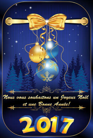 un used: Greeting card for winter holiday in French language. We wish you Merry Christmas and a Happy New Year (French text: Nous vous souhaitons un Joyeux Noel et une Bonne Annee). Print colors used Stock Photo