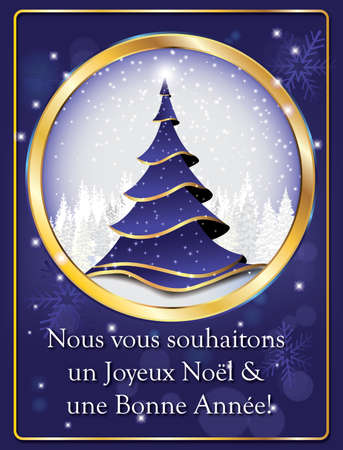 un used: Nous vous souhaitons un Joyeux Noel et une Bonne Annee! - French greeting card. Text translation: We wish you Merry Christmas and Happy New Year! Print colors used. Stock Photo