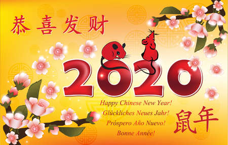 Happy Chinese New Year of the Rat 2020! - greeting card with yellow background and message in many languages. Ideograms translation: Congratulations and get rich. Year of the Rat. Banque d'images