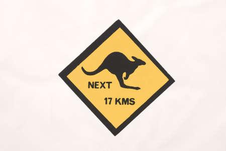 Sign Warning of Kangaroos against white background photo