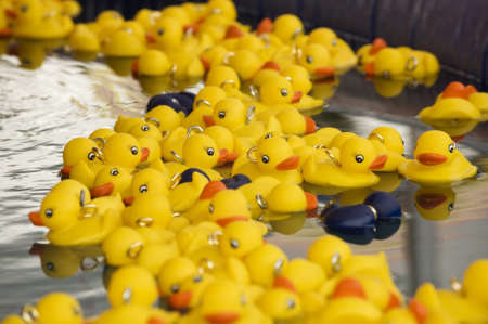 Closeup of yellow plastic ducks in a carnival game