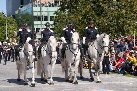credit union: Adelaide, Australia - November 14, 2015: The South Australian Police Mounted Operations Unit in the annual credit union christmas pagaent. The parade is sponsored by South Australian Credit Unions and attracts over 300,000 people annually to the centre of Editorial
