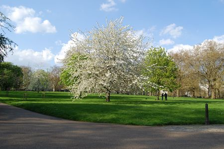 welcom: london park  Stock Photo