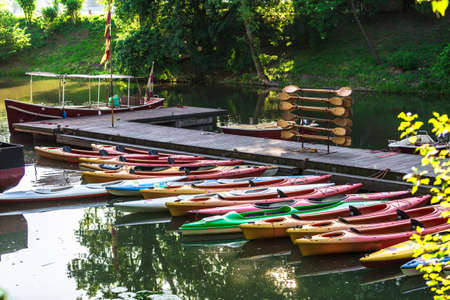 bunched: Colorfull boats with paddles and trees with selective focus