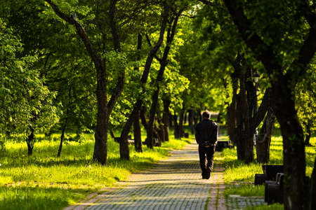 single lane road: Lonely man goes away on road among trees on summer sunny day