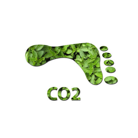 carbon footprint: Footprint made up of green leaves to represent environmetal issues or carbon footprint.
