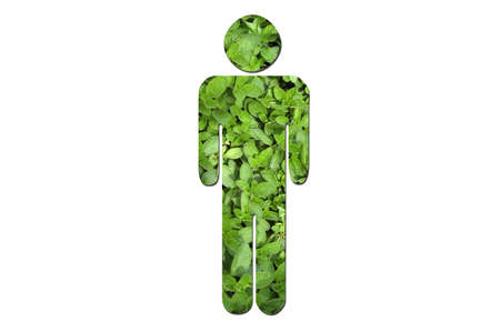 environmental issues: A man made up of green leaves to symbolize environmental issues. Stock Photo
