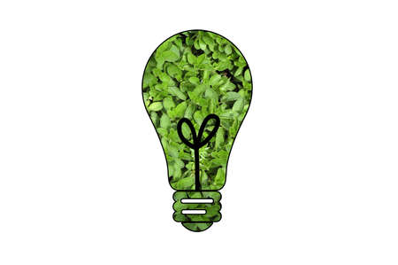 environmental issues: A light bulb made out of green leaves to symbolize ecological or environmental issues.