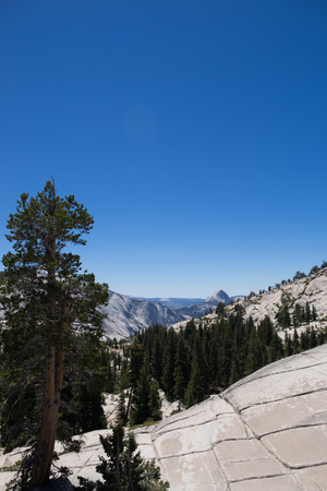 distance: Half Dome In The Distance