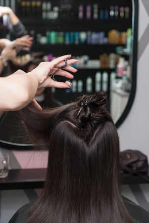 haircutting: hairdresser in the beauty salon makes the girl a new haircut