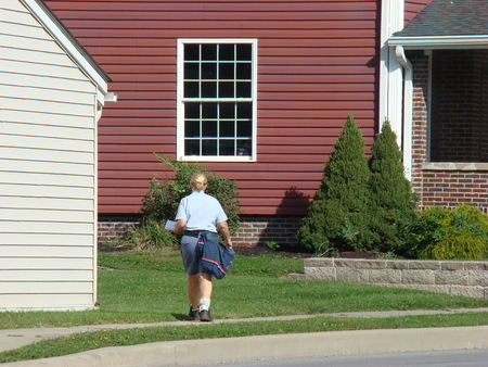 residential tree service: Mail carrier delivering the mail