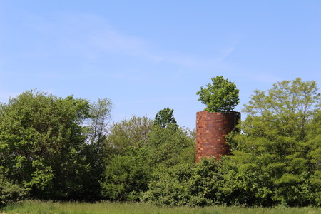 An old abandoned silo with a tree growing out of the top Stock Photo