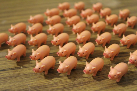 Large group of cute toy pigs stampeding in the same direction