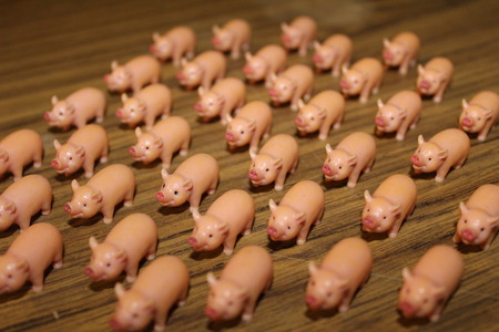 pigpen: large group of cute toy pigs running in the same direction Stock Photo