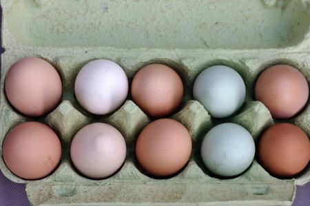 ten chicken eggs in various colors in an egg carton