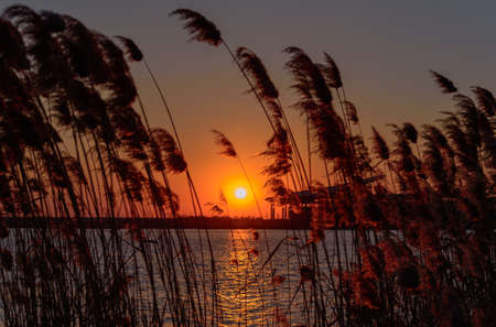 Lianyungang, in the northern part of Jiangsu, has a beautiful seaside wetland, reeds fluttering, seagulls flying and lake water.