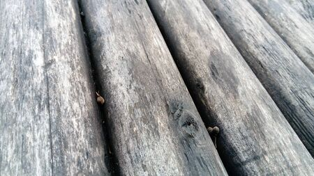 A construction log for use in construction without longitudinal sawing. Round timber assortment. Fragment of the construction of rounded wooden logs. The effect of moisture on wood.