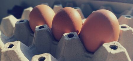 Chicken eggs in a carton. Beige eggs in a container when illuminated by spring sunlight. Ingredients. Agricultural products. Farm food. Proper protein nutrition. Recycled packaging.Demography concept.