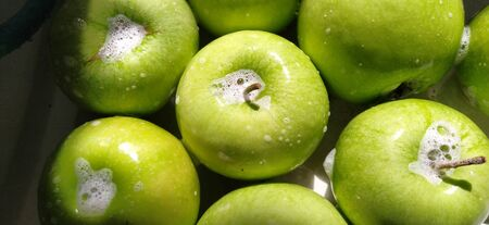 Wet soapy green apples. Thoroughly wash vegetables and fruits with water and soap. Prevention of infectious diseases. Apples close up. Vegetarianism. High glycemic index. Soapy foam sparkles in sunlight.