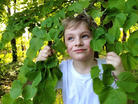 Beautiful blond boy in the forest. A baby peeks out from behind the green foliage of a linden. Close up face. A slight smile, thoughtfulness,a look to the side.The concept of ecology, purity, harmony