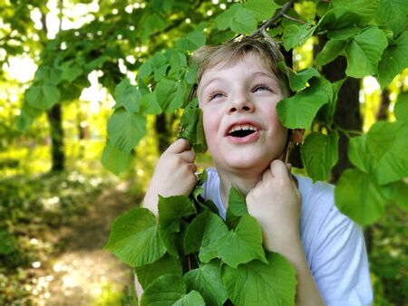Blond boy holds linden branches with his hands. The baby is smiling. Milk teeth gave way to molars. Dental theme. The schoolboy is 7 years old. Toddler in a white T-shirt. A wide smile with teeth