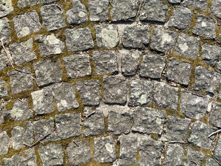 cobble gray pavement slabs or stones for floor, wall or path. Traditional fence, court, backyard or road paving. Old square cobblestones overgrown with grass and moss. Close-up