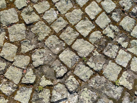Diagonal cobble gray pavement slabs or stones for floor, wall or path. Traditional fence, court, backyard or road paving. Old square cobblestones overgrown with grass and moss. Stok Fotoğraf