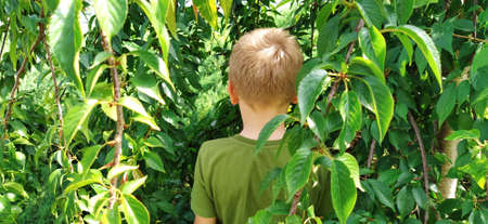 The boy pisses in the bushes. A child in a green T-shirt on a background of green bushes. Directing urination in a public place. Urinary incontinence or bad manners Foto de archivo