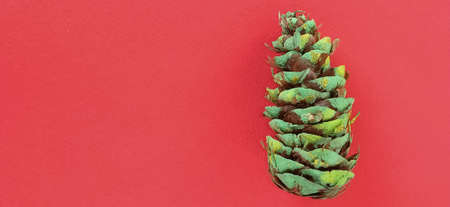 a beautiful pine cone colored green and decorated with gold sequins on a red background. Copy space. Christmas cone. Spruce cone on the right.