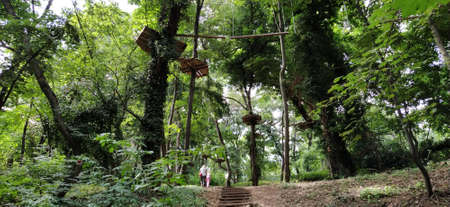 Go Ape Adventure. Located in national parks and local recreational facilities, Wooden and rope structures for movement