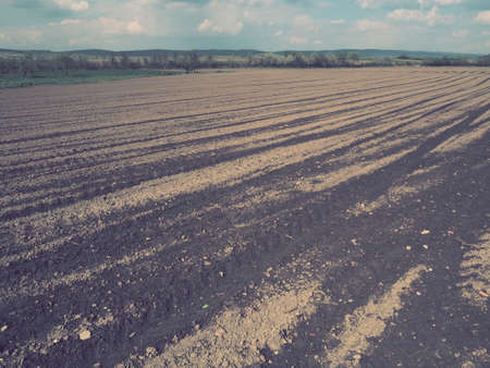 Landscape with agricultural land plowed, prepared for harvest. Agricultural landscape, arable land for temporary crops that can be plowed and used to grow crops. Serbia, Sremska Mitrovica, Fruska gora