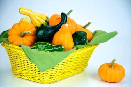 A selection of gourds, pumpkins and squash in a basket for the holidays