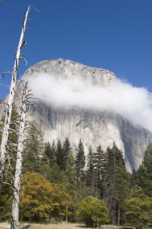 el capitan: A necklace of white fluffy clouds decorates the striated rock face of El Capitan under a clear blue sky on a sunny afternoon in Yosemite.  Stock Photo