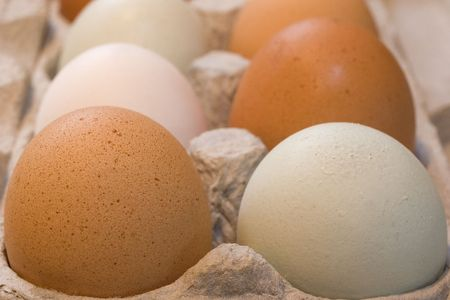 Colored free range eggs -- speckled brown, blue-grey, white -- in a environmentally friendly cardboard carton.  Imagens