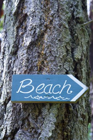 A blue and white hand-made sign nailed on a tree points the way to the beach.  Imagens
