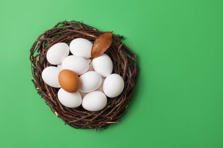 Bird nest with eggs isolated on green box background, top view, for copy space and product placement.