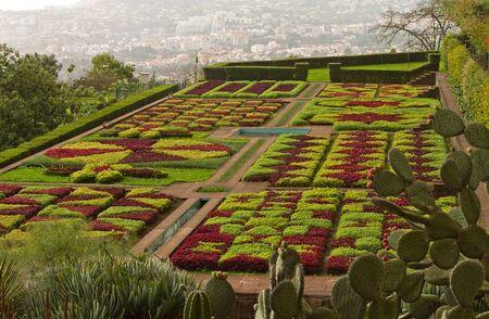 Beautiful garden in Funchal, Madeira. Stock Photo