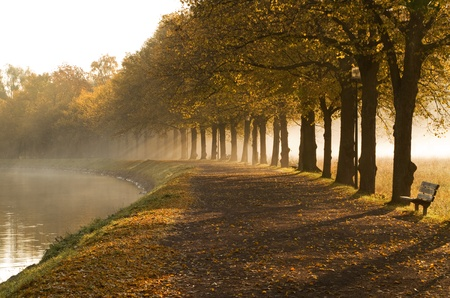 calmness: Walkway at the canal in morning mist.