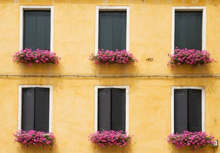 Old yellow facade with pink flowers. Stock Photo