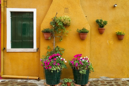 Flower decorated yellow wall. Stock Photo - 19797544