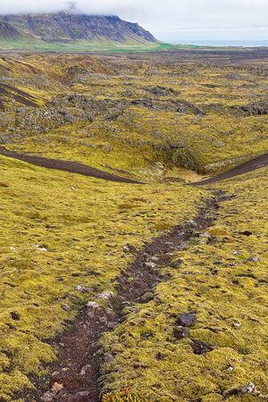 lava field: View over lava field landscape in Iceland. Stock Photo