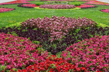 landscaped garden: Landscaped garden with colourful flowers.
