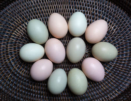 product range: Eggs from the local farm in their natural colours. Stock Photo